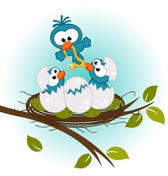 Bird feeding babies in nest vector