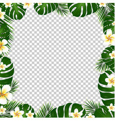 Border palm trees and plumeria vector