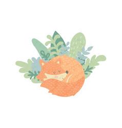 foxy vector image