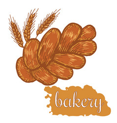 hand drawn decorative bread bakery vector image