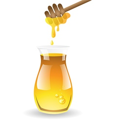 Honey on white background vector image