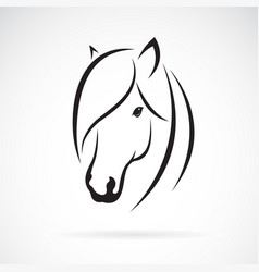 Horse head design on white background animal vector