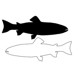 trout silhouette vector image