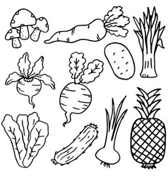 hand draw doodle vegetable and fruit vector image