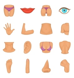 Body parts icons set cartoon style vector image vector image