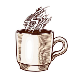 a cup coffee in vintage style hand drawn vector image