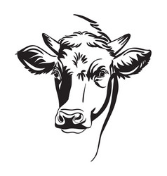 abstract portrait bull vector image
