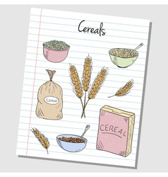 Cereals doodles lined paper colored vector