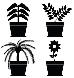 Flower in pot black vector