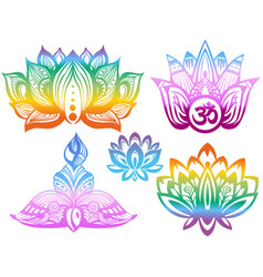 Ornamental color lotus flowers vector