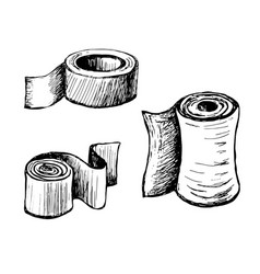 Toilet paper and towels vector