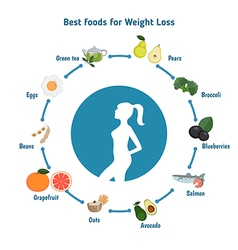 Best Foods for weight loss vector image