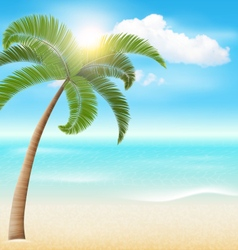 Beach with Palm and Clouds Summer Vacation Holiday vector image