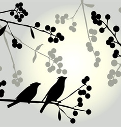 Birds on the branch Sunny day vector image