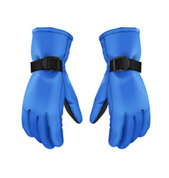 blue winter gloves vector image