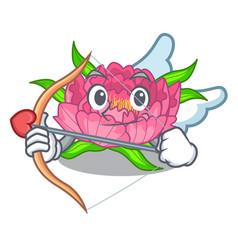 cupid peony flowers in a cartoon basket vector image