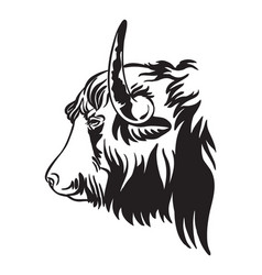 decorative contour portrait bull in profile vector image