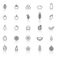 Fruit line icons with reflect on white background vector