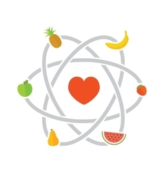 Fruits scheme vector image