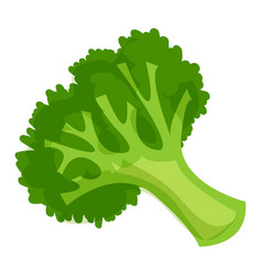 healthy broccoli icon cartoon style vector image