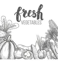 Monochrome set of vegetables vector