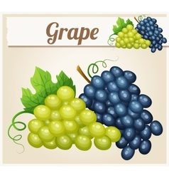 White and blue grape bunches Cartoon icon vector