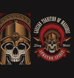 with a spartan skull vector image