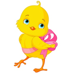 Chick with bow vector image
