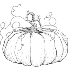 big pumpkin with tail vector image