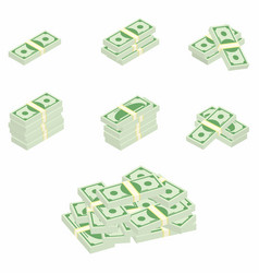 dollars packages banknotes in various angles vector image