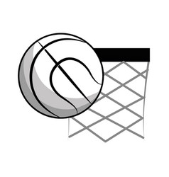 figure basketball and basket with the ball icon vector image