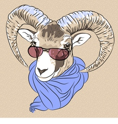 funny Alpine ibex in red eyeglasses and scarf vector image vector image