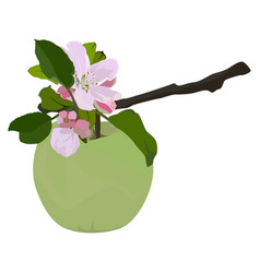 Green apple and branch in blossom flat vector