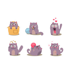 grey mischievous cat in different situations with vector image