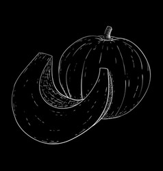 pumpkin hand drawn sketch on black background vector image