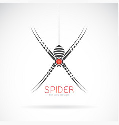 Spider design on white background insect animal vector
