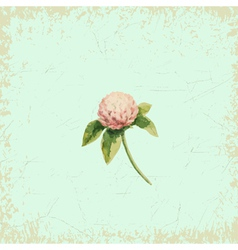 Clover flower on vintage background watercolor vector