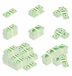 dollars packages of banknotes in various angles vector image vector image