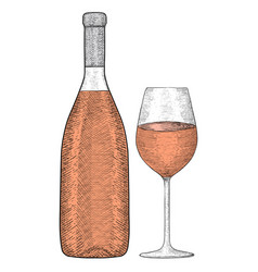 bottle red wine with glass hand drawn sketch vector image