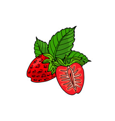 Cute cartoon red strawberries and leaves vector