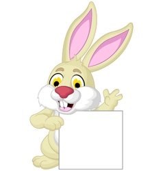 Rabbit cartoon posing with blank sign vector