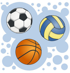 set balls for soccer volleyball and basketball vector image