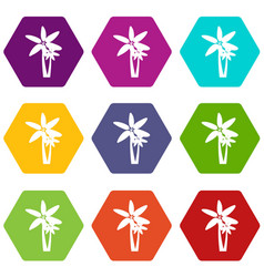 two palm trees icon set color hexahedron vector image