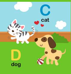alphabet letter c-cat d-dog vector image