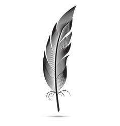 a large black and white feather graphic arts vector image