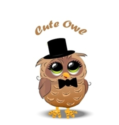 Cute owl in a hat vector