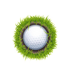 hole one round vector image