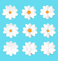 lovely white paper flower set vector image