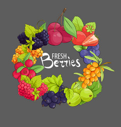 Sweet berry frame vector