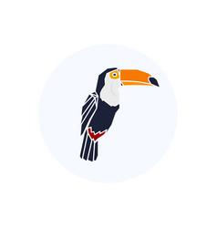 toucan logo vector image